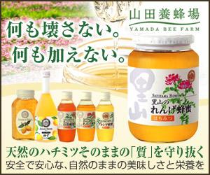 里山のれんげ蜂蜜1?画像